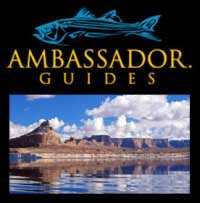 ambassador-guide-logo.jpg