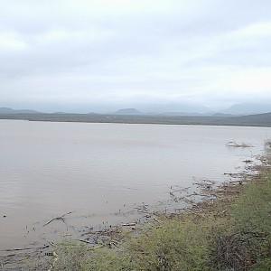 Horseshoe lake hookedaz arizona fishing community for Bartlett lake fishing report
