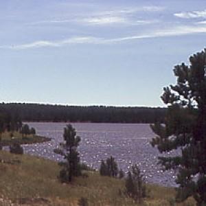 Mormon Lake Az >> Mormon Lake Hookedaz Arizona Fishing Community