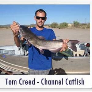 Hook up tackle arizona